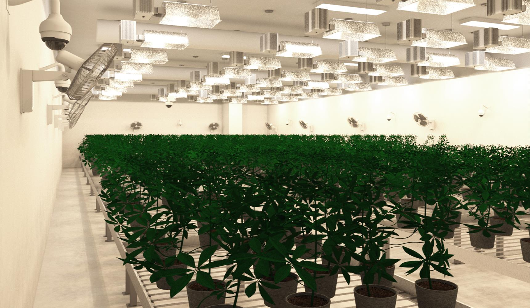 Grow Room Facility Design